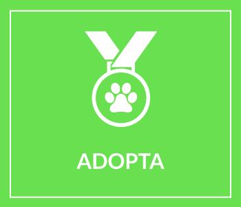 adopta-menu